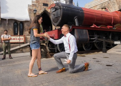 Harry Potter Wizarding World of Harry Potter Marriage Proposal