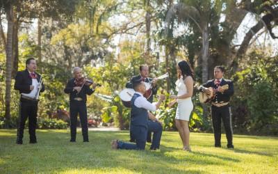 Leu Gardens Marriage Proposal