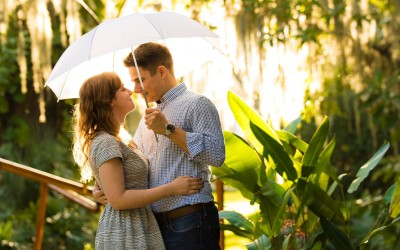 Orlando Surprise Proposal 4