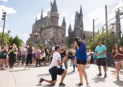 Wizarding World of Harry Potter Marriage Proposal 2