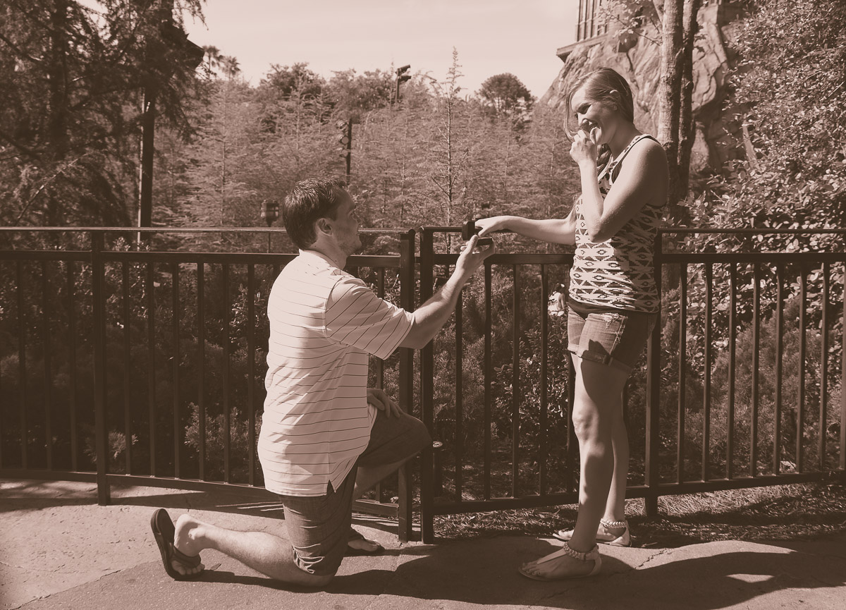 Wizarding World of Harry Potter Proposal