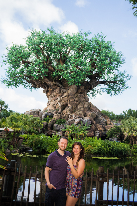 Disney Animal Kingdom Marriage Proposal