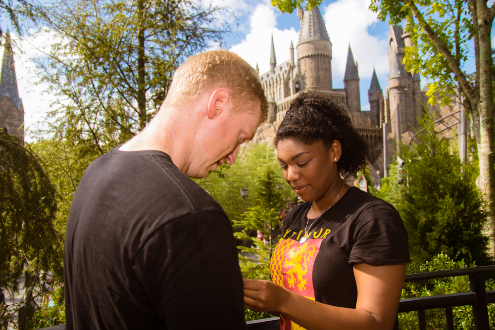 Universal Harry Potter Proposal