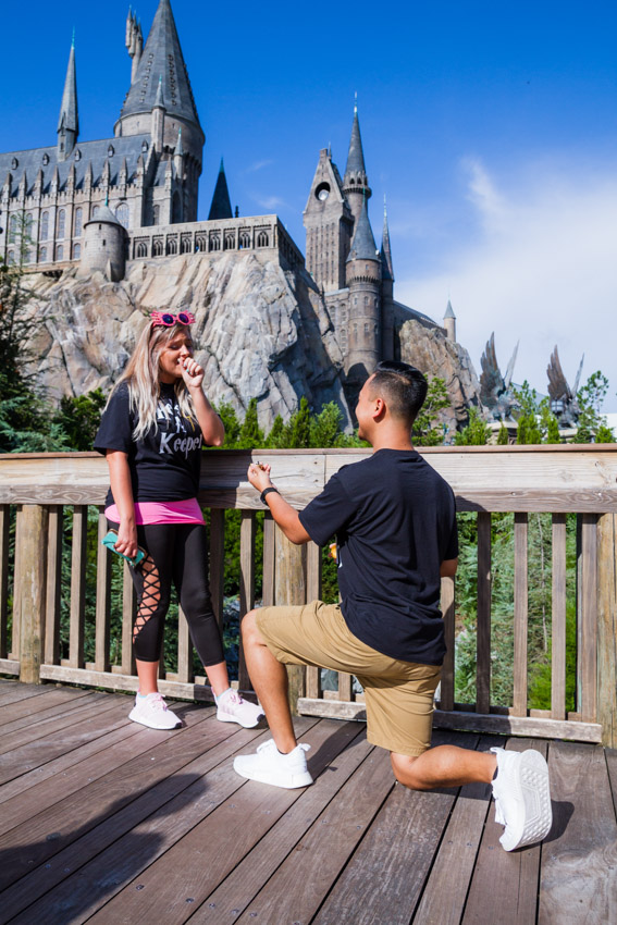 Wizarding World of Harry Potter Proposa