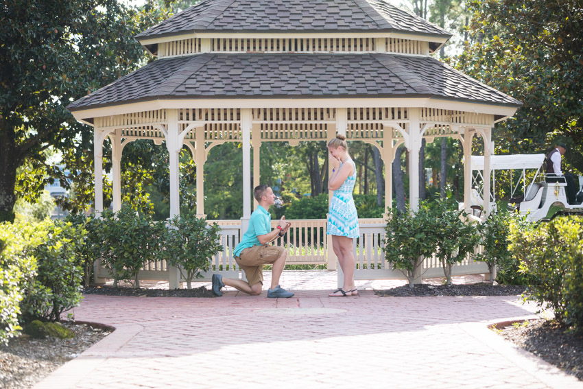 Port Orleans Riverside Proposal