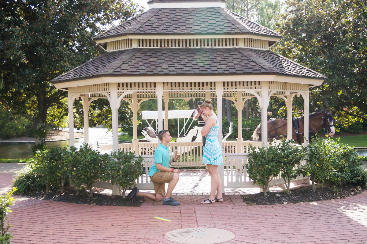 Disney Port Orleans Proposal