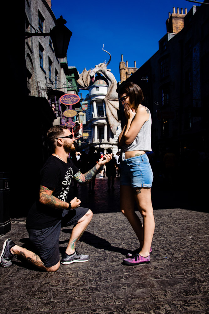 Diagon Alley Proposal