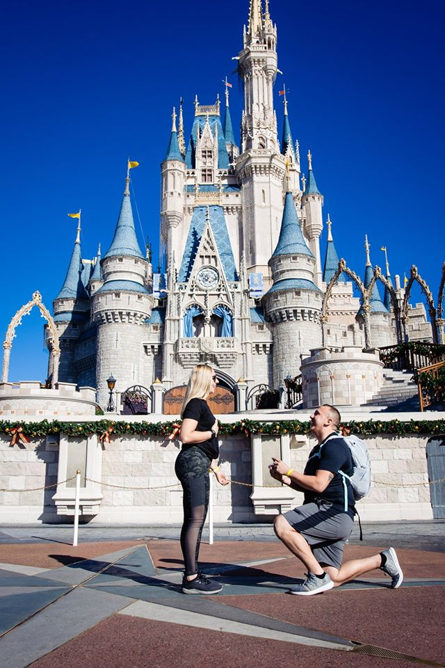 Cinderella Castle Proposal