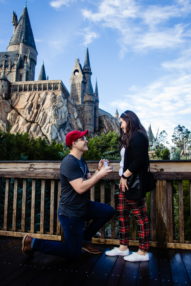 Hogwarts Castle Proposal