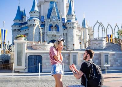 Disney Magic Kingdom Proposal