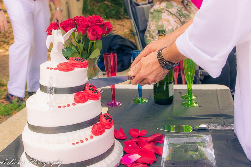 Orlando Wedding Photographer Gay Wedding