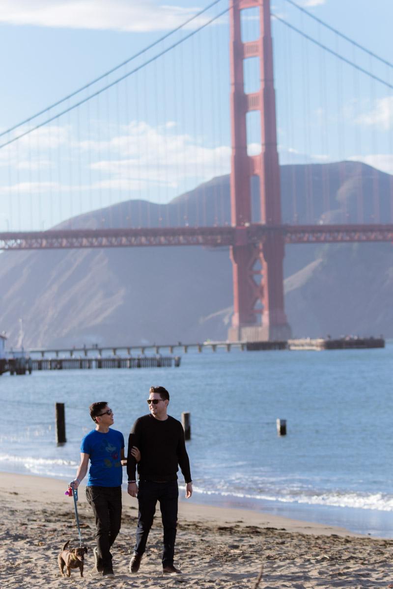 San Francisco Same Sex Engagement