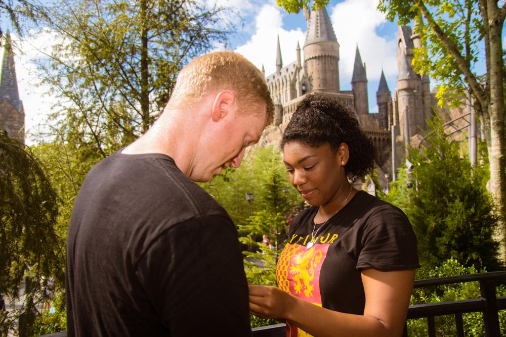 Universal Harry Potter Proposal