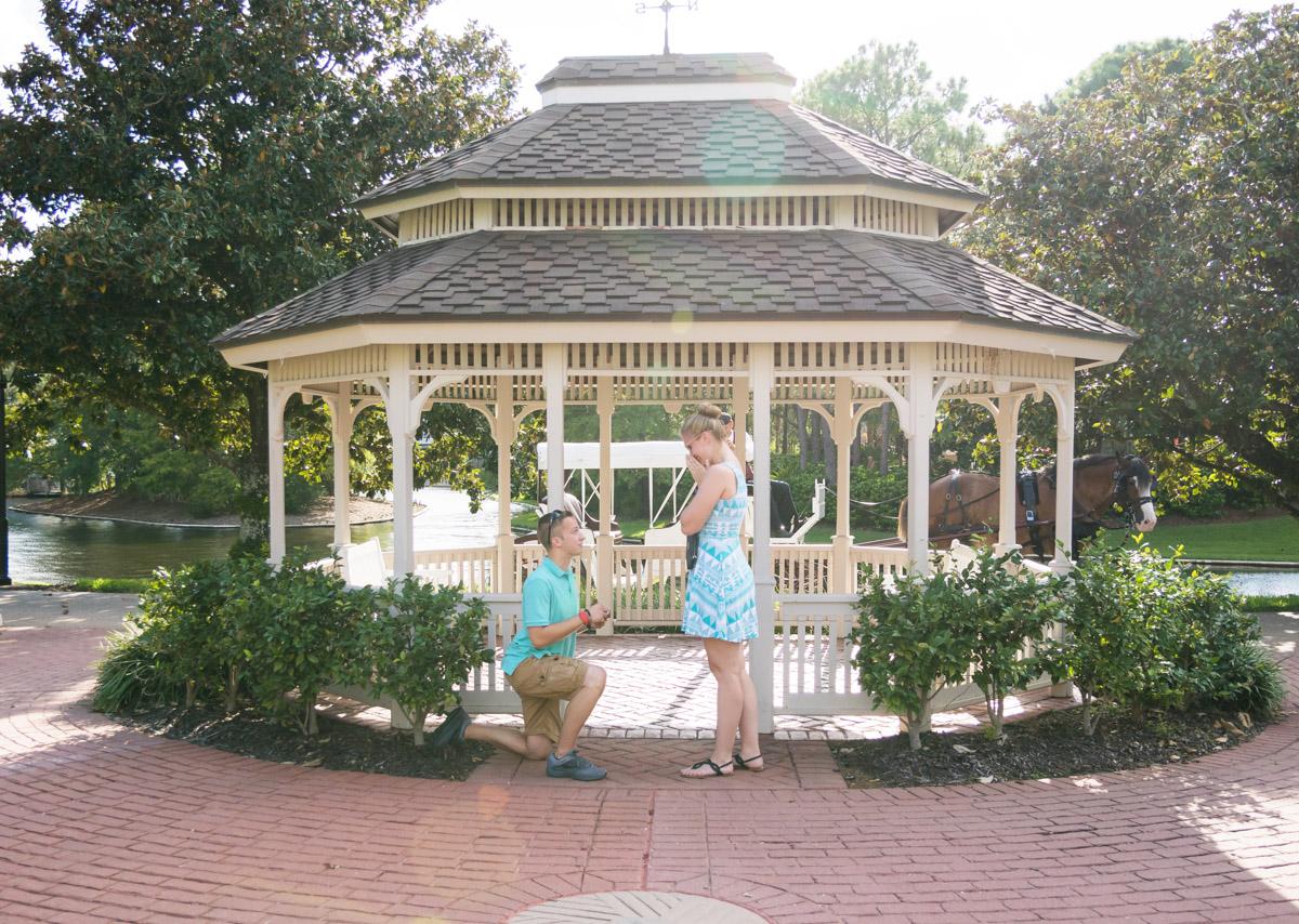 Disney Port Orleans Proposal