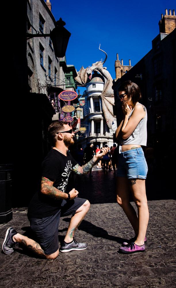 Diagon Alley Proposal